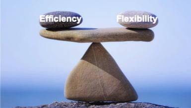 Blog 56 – Efficiency Versus Flexibility In The Design Of IBC Policies